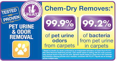 Our Pet Urine and Odor Removal Treatment technicians are friendly and happy to help you