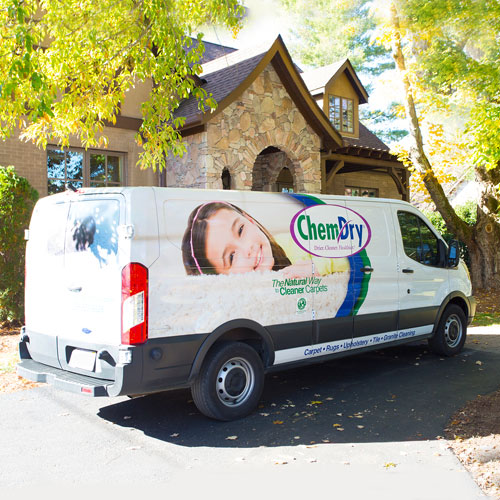 Carpet Cleaning Statistics from Green Mitten Chem-Dry in Ann Arbor, MI