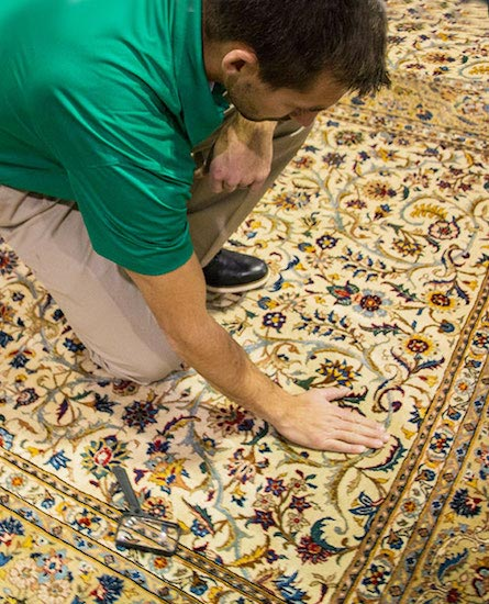 Professional Area and Oriental Rug Technician by Green Mitten Chem-Dry